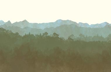 Cultivos ecologicos certificados TaullOrganics Pirineo