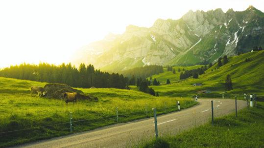 prados Suiza